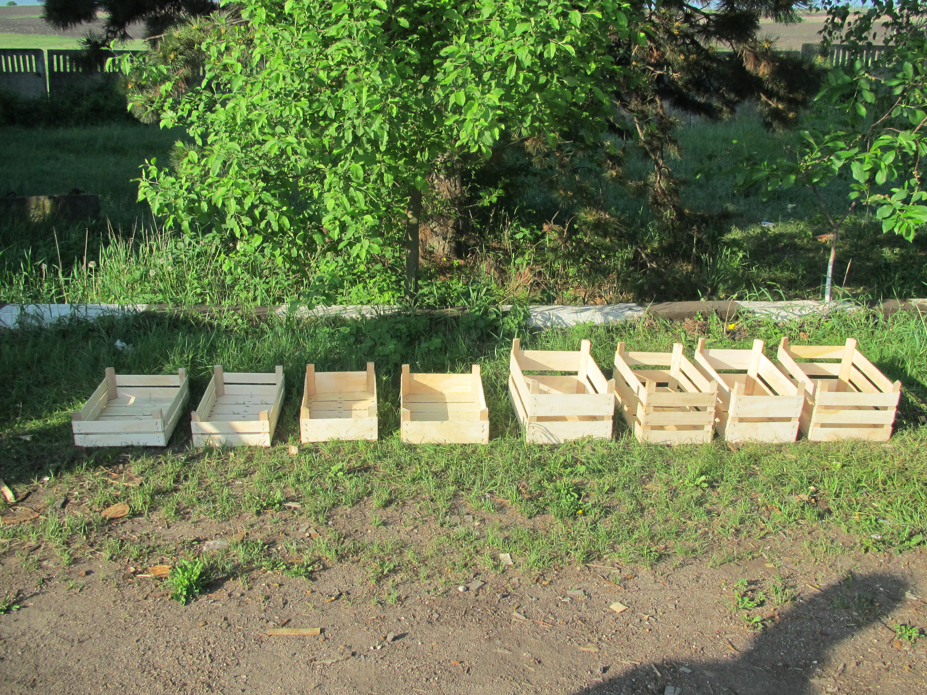 производство деревянной тары из шпона